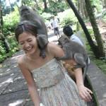 sacred-monkey-forest-bali1