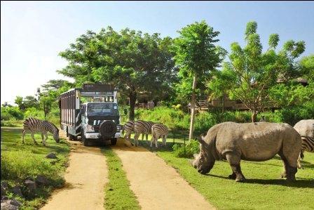 Bali-Safari-and-marine-parkhttp://www.balivacationdriver.com/wp-content/uploads/2015/08/marine-park1.jpg