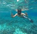 Senorkeling at Lembongan islan